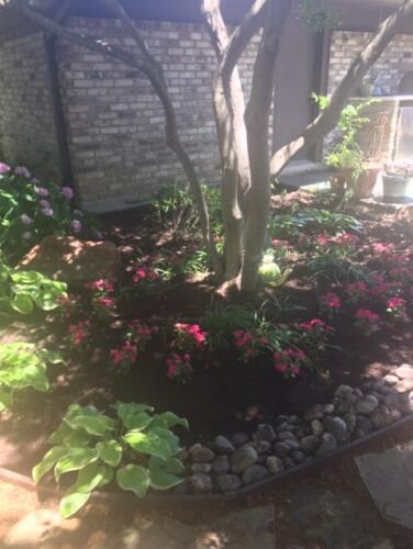 n dallas backyard6